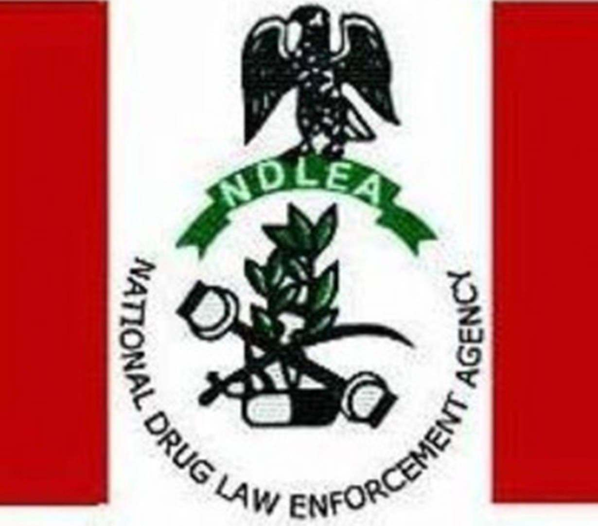 Seizures at ports: Stakeholders task NDLEA on respect for rules of engagement