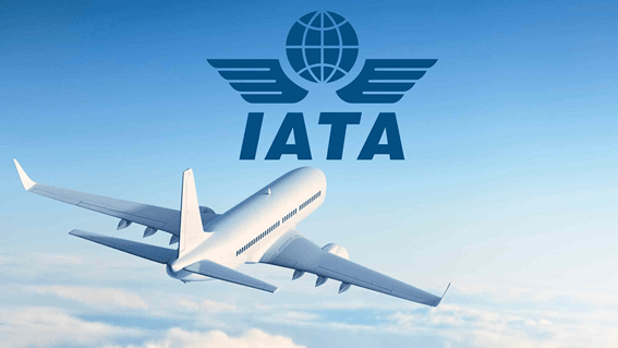 IATA call for govts support to save aviation sector
